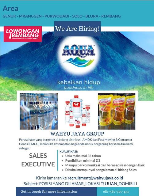 Lowongan Kerja Sales Executive Wahyu Jaya Group Rembang