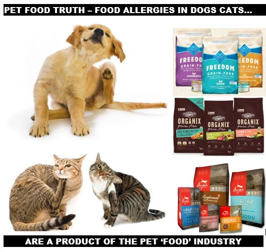Ottawa Valley Dog Whisperer Food Allergies In Dog Cats