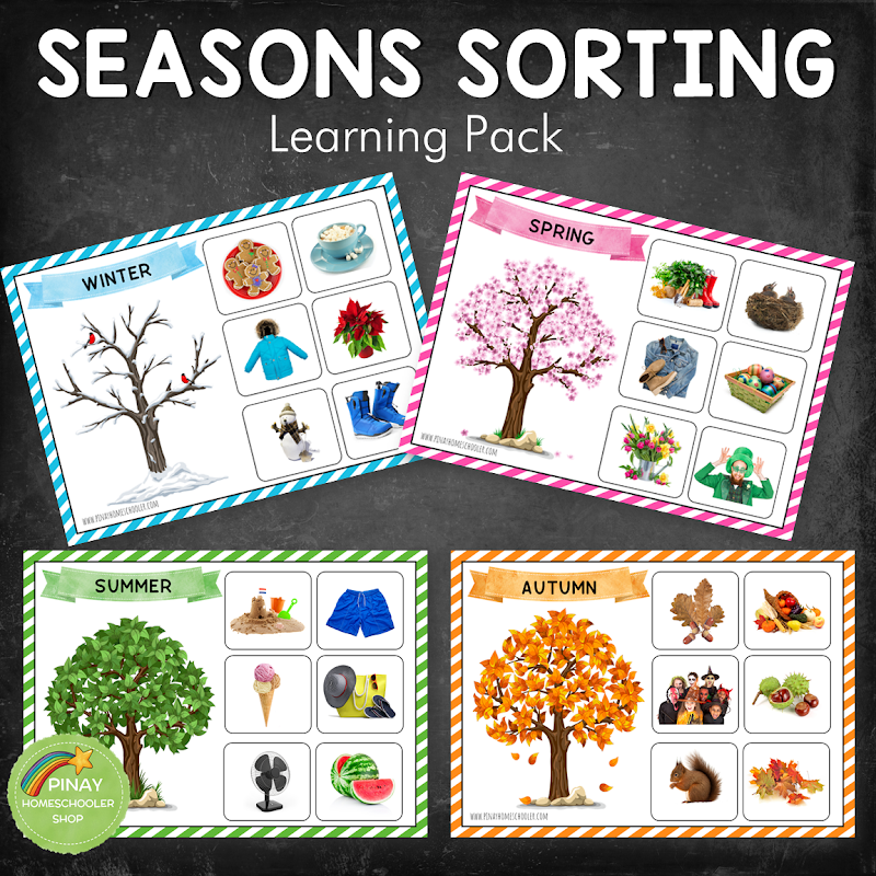 Four Seasons Sorting Activity Learning Pack