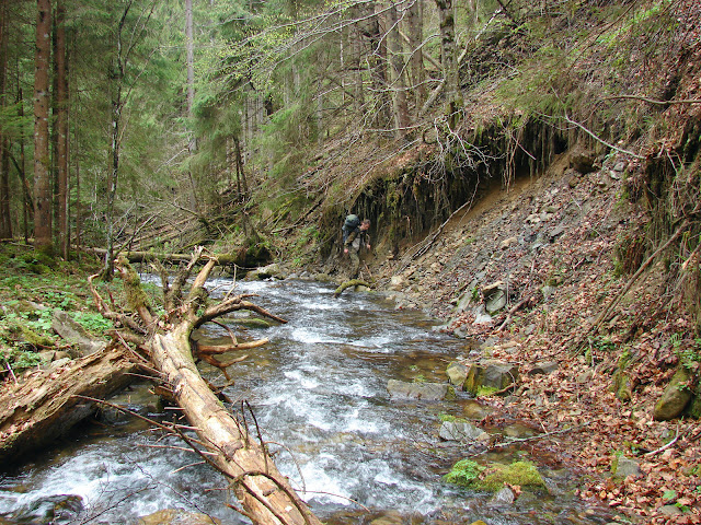 Ущелье реки Сопотей