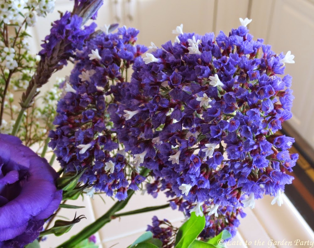 Late to the garden party in a vase on monday florapalooza the paper like flowers of limonium perezii are often used in dried flower arrangements mightylinksfo