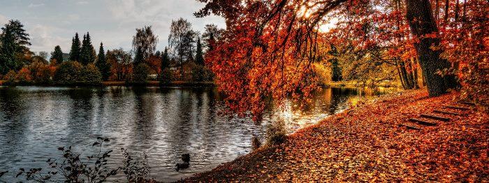Riverside Park: River Wye, Derbyshire, UK
