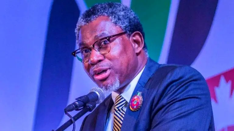 FG commissions 2 Aircraft for Mineral deposits Survey