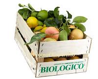 Logo Vinci gratis 20 chili di arance, pompelmi e clementine