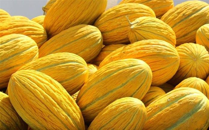 sarı kabuklu meyveler kavun