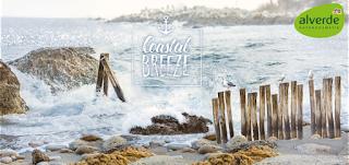 Preview: alverde Coastal Breeze - www.annitschkasblog.de