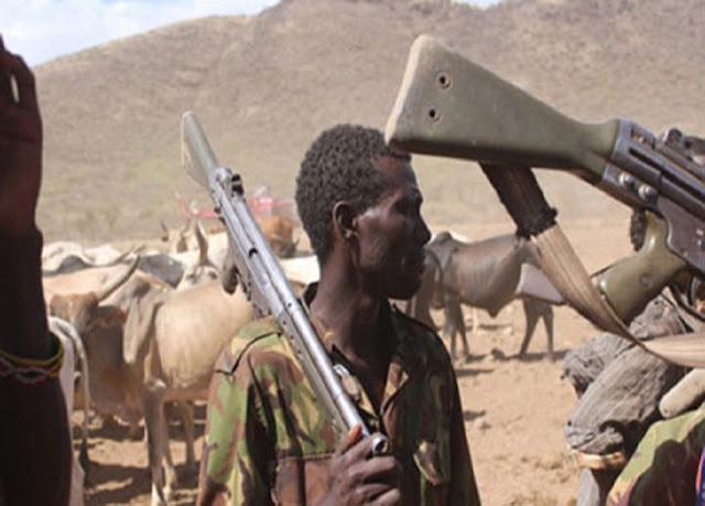 Police, cattle rustlers exchange bullets in Katsina (DETAILS)