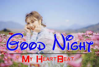 Latest Beautiful Good Night Wallpaper Free Download %2B71