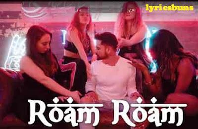 Roam Roam - Hamza Faruqui, Lyrics