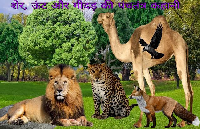 Sher , oont  Aur Gidad ki kahani  -