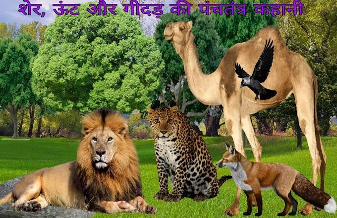 शेर , ऊंट और गीदड़ की पंचतन्त्र  कहानी   Sher , oont  Aur Gidad ki kahani  -