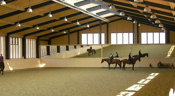 Marcheur Chevaux Miroir Equestre