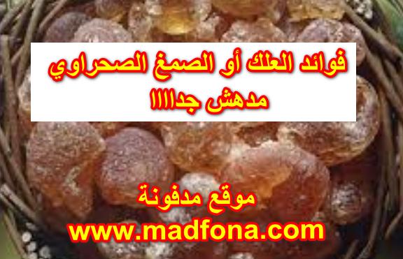 بيع العلك أو الصمغ الصحراوي