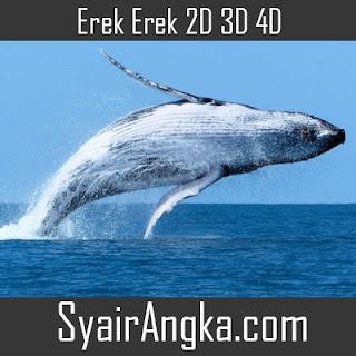 Erek Erek Ikan Paus di Buku Mimpi 2D 3D 4D Lengkap