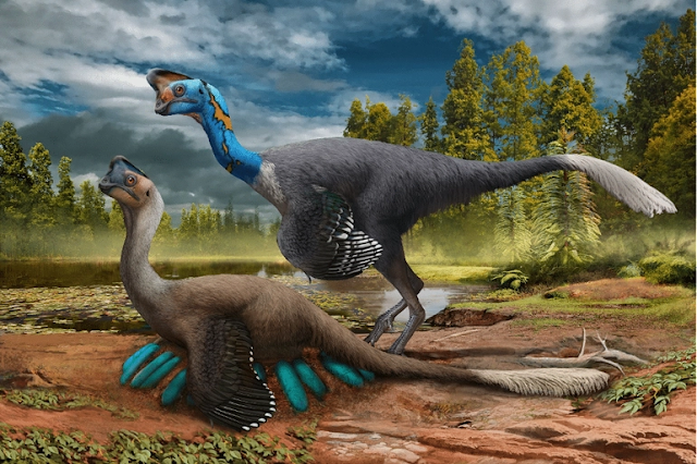 World's First Dinosaur Preserved atop a Nest of Fossilized Eggs
