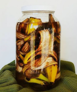 a jar of water soaked with bananas