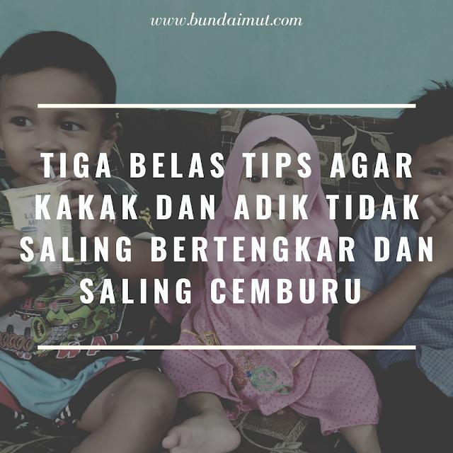 Tiga belas tips agar kakak Adit tidak bertengkar