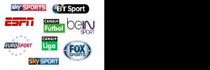 Premium BeIN Sports Tring Arena Pink HRT