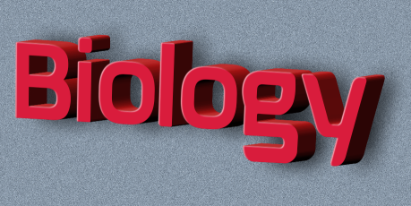 20 Minute How to Make 3D TEXT EFFECTS in CorelDRAW - Corel Point