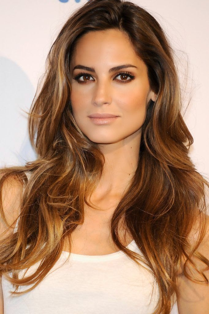Beautiful brown/brunette hair with golden/honey/caramel highlights.