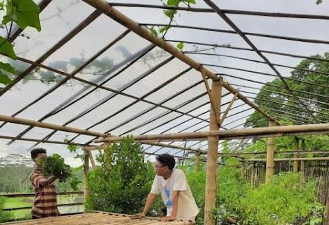 Hari Lingkungan Hidup Nasional : Mahasiswa KKN MIT DR 11 Kelompok 43 Mengembangkan Green House Sidomulyo