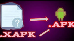 Cara Instal XAPK