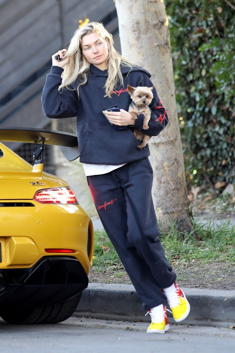 Jessica Hart Clicked Out with Her Dog in Los Angeles 5 Feb-2020