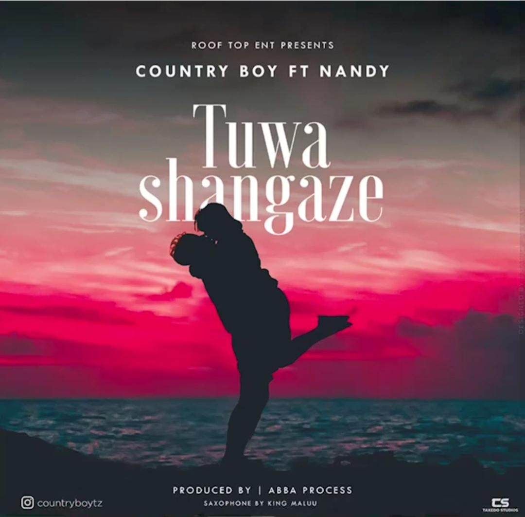 Country Boy Ft. Nandy - Tuwashangaze