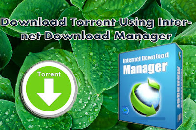 How To Download Torrents With IDM 2018