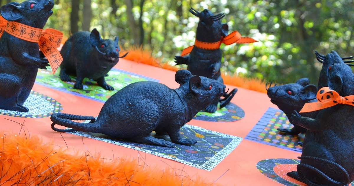 What Happens at Grandma's: Ring Toss Rats!
