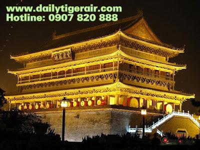 Đại lý ủy quyền hãng Tiger Air ở Việt Nam
