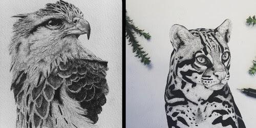 00-Ink-Drawings-Paige-Bates-www-designstack-co