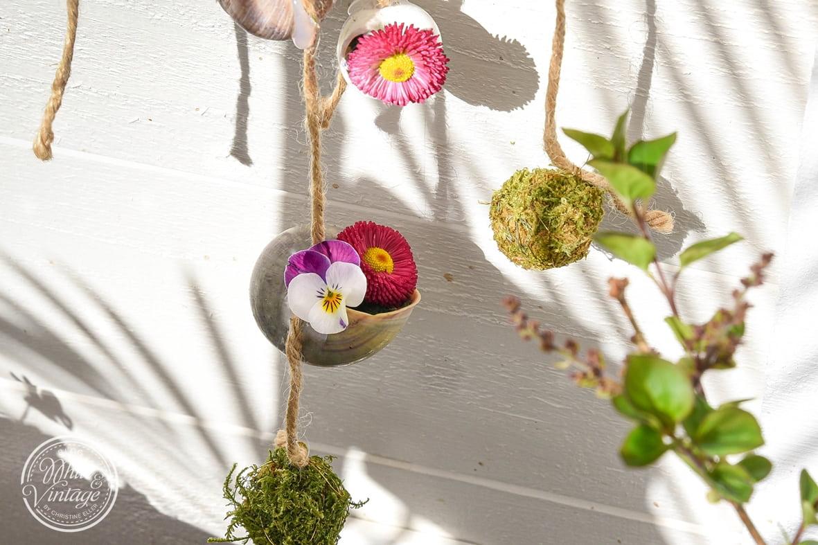 Naturdeko aus Schneckenhäusern und Blumen.