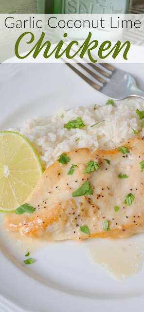 Chicken breast and rice dinner close up