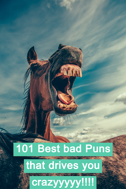 101 Best bad Puns that drives you crazyyyyy!!!