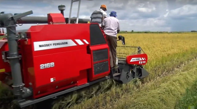 This is a RICE ONLY COMBINE HARVESTER. This means that the MF 2168 harvests rice and rice only.