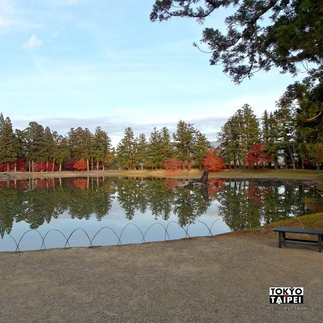 【毛越寺】紅葉與庭園 想像800年前的夢幻淨土
