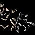 Penha )) Retomada a campanha de coleta de tampinhas plásticas na Câmara