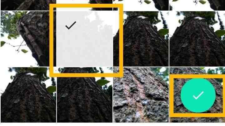 Cara menggabungkan foto dan video di InShot