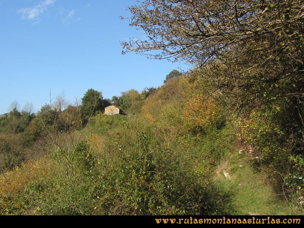 Ruta Baiña, Magarrón, Bustiello, Castiello. Cabaña en el camino