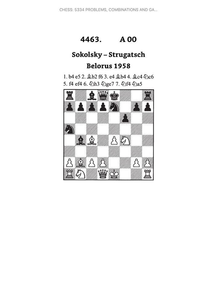 chess skills  the polgar brick  ebook edition