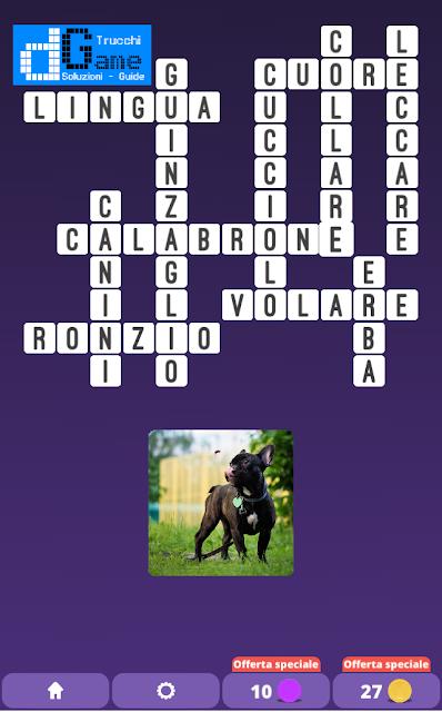 Soluzioni One Clue Crossword livello 20 schemi 15 (Cruciverba illustrato)  | Parole e foto