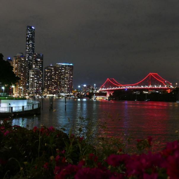 Brisbane River Story Bridge Skyline Hochhäuser Nacht lichter rot beleuchtet Blumen