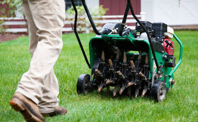 lawn aeration cost, aeration cost, lawn aeration service cost, cost to aerate and overseed lawn, aeration and overseeding cost, cost to aerate lawn, how much does aeration cost, how much to rent an aerator, core aeration cost, trugreen aeration and seeding cost, trugreen lawn aeration cost, yard aeration cost, lawn aeration and overseeding cost, aerate and overseed cost, cost of lawn aeration, aeration prices, cost to aerate and seed lawn, aeration and seeding prices, lawn care cost per acre, aerates, lowes com lawn care, local lawn aeration service, lawn doctor near me, diy lawn core aerator, average cost for lawn care service, lawn service prices per acre,