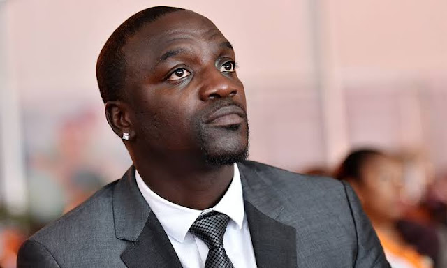 Akon's net worth