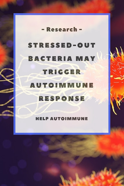 Stressed-Out Bacteria May Trigger Autoimmune Response