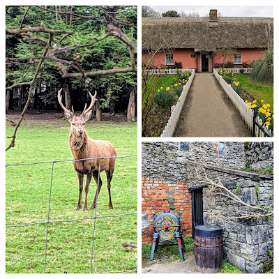 Day trips from Limerick City: Bunratty Castle and Folk Park