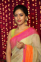 Anu Emanuel Looks Super Cute in Saree ~  Exclusive Pics 030.JPG