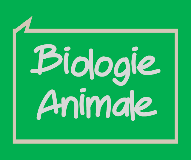 Cours Biologie Animale
