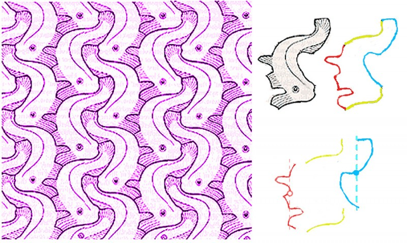 Chuinn 39 s territory tessellation for Tessellating shapes templates